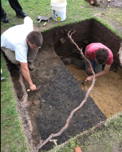 Feature: The drastic differences in soil color in this excavation unit indicate a feature may be present.
