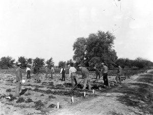 Students Working the Fields, 1892, via MSU Archives and Historical Records