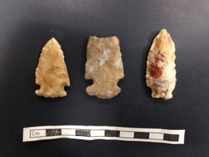 Late Archaic projectile points from the Beaumont Site