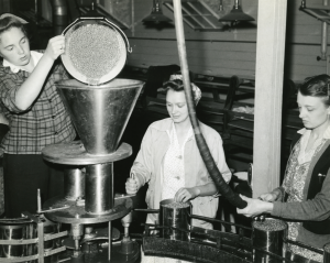 Canning at the cannery during World War II.