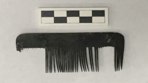 Comb from West Circle Privy - Image Source Amy Michael