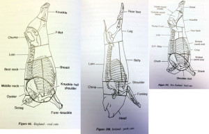 Different butchering techniques and cuts of meat from around the world. Image source: