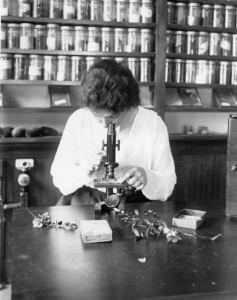 Women looking through microscope c. 1919. Image courtesy of MSU Archives & Historical Collections.