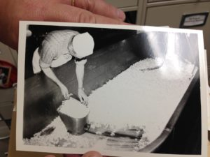 Making cheese in the Anthony Hall Dairy Plant, Image courtesy of Dr. Partridge.