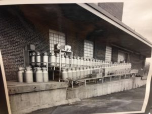 Milk cans outside of the Dairy Building awaiting delivery to campus dorms. Image courtesy of MSU Archives & Historical Collections